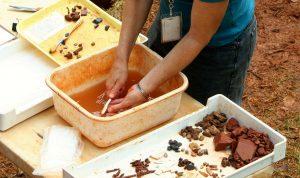 vondsten wassen archeologie